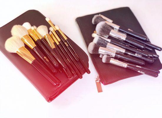 Feiyan makeup brushes